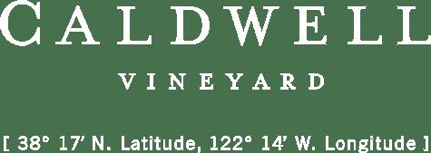 CV logo with coordinates white